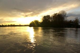 Skagit River by Jessamyn Tuttle