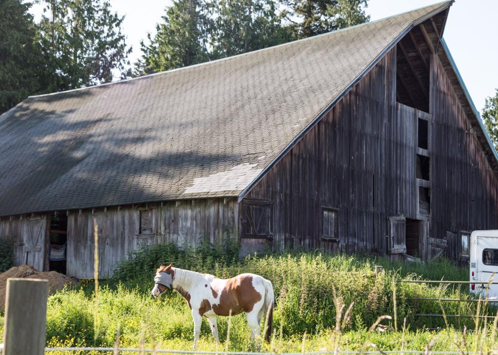 O.J. Rucker Barn by Jessamyn Tuttle (2)